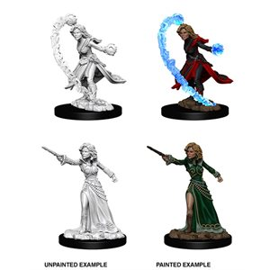 Pathfinder Deep Cuts Unpainted Miniatures: Wave 6: Human Female Wizard