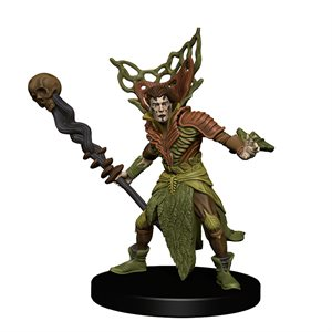 D&D Minis: Icons of the Realms: Guildmasters Guide to Ravnica Companion Starter One