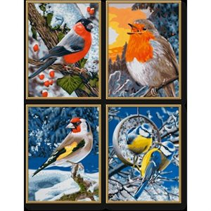 Paint by Numbers: Winter Birds (Quattro)