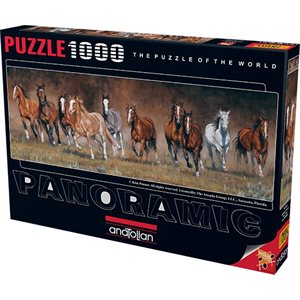 Puzzle: 1000 Free Time