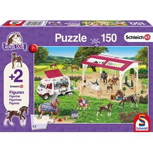 Puzzle: 150 Riding School and Veterinarian