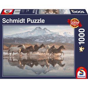 Puzzle: 1000 Horses in Cappadocia