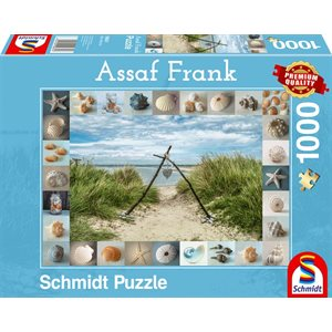 Puzzle: 1000 Seashore Colllectibles