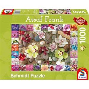Puzzle: 1000 Orchids