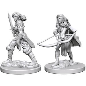 Pathfinder Deep Cuts Unpainted Miniatures: Wave 1: Human Female Fighter