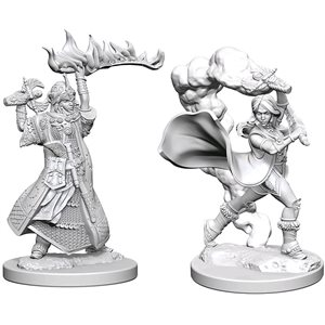 Pathfinder Deep Cuts Unpainted Miniatures: Wave 1: Human Female Cleric