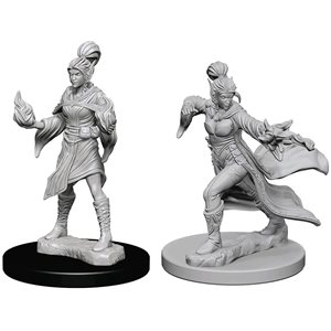 Pathfinder Deep Cuts Unpainted Miniatures: Wave 1: Elf Female Sorcerer
