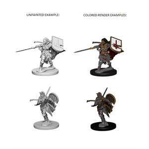 Pathfinder Deep Cuts Unpainted Miniatures: Wave 1: Human Female Paladin