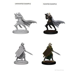Pathfinder Deep Cuts Unpainted Miniatures: Wave 2: Elf Male Paladin