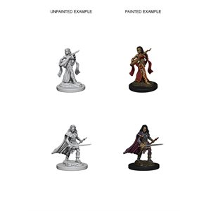Pathfinder Deep Cuts Unpainted Miniatures: Wave 4: Human Female Bard