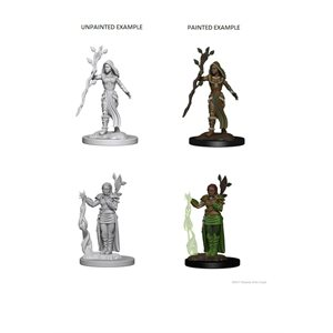 D&D Nolzurs Marvelous Unpainted Miniatures: Wave 2: Human Female Druid