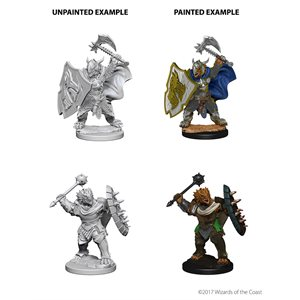 D&D Nolzurs Marvelous Unpainted Miniatures: Wave 4: Dragonborn Male Paladin