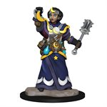 Wardlings RPG figure (Painted): Girl Cleric & Winged Cat