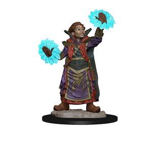 Wardlings RPG figure (Painted): Wizard & Imp