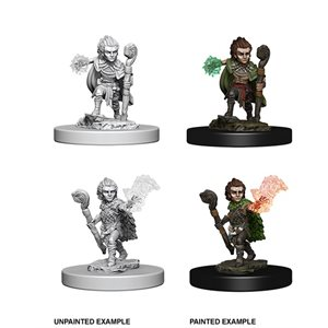 Pathfinder Deep Cuts Unpainted Miniatures: Wave 5: Gnome Male Druid