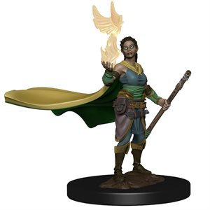 D&D Icons of the Realms Premium Miniature: Elf Female Druid ^ Aug 7, 2019
