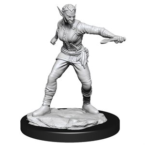 D&D Nolzur's Marvelous Unpainted Miniatures: Wave 13: Shifter Rogue Female