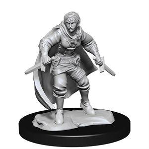 D&D Nolzur's Marvelous Miniatures: Wave 14: Half-Elf Rogue Female ^ MAR 2021
