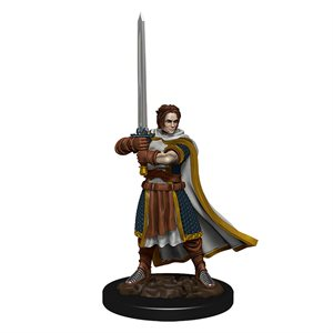 D&D Minis: Icons of the Realms Premium Painted Figures Wave 4: Human Cleric Male ^ DEC 2020